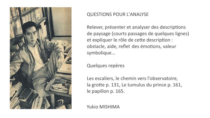 tumulte-questions