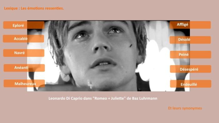 LEXIQUE Emotions Activités Photo CAPRIO Corrigée